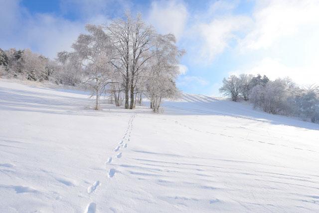 スキー場に着いたら