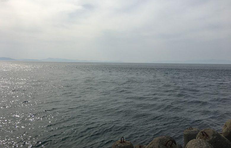 2018年5月28日 小島漁港を偵察。